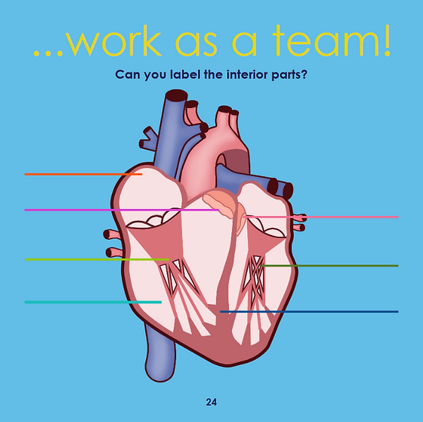 heart page 6 for website.png