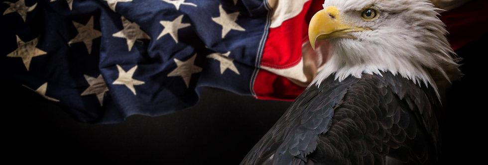 LIVE: American History - Part 1 (M 6:30-7:30pm EST. Ages 14+)