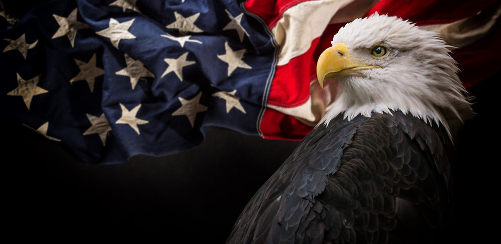 American%20Bald%20Eagle%20-%20symbol%20o