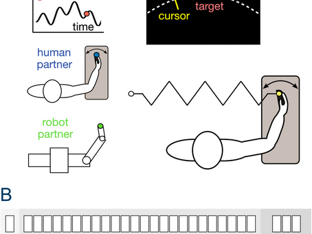 For Motion Assistance Humans Prefer to Rely on a Robot Rather Than on an Unpredictable Human