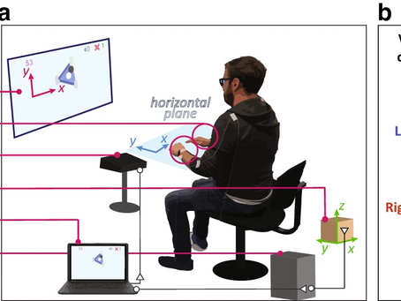 Human performance in three-hands tasks