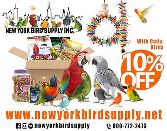 Bird ad.jpg