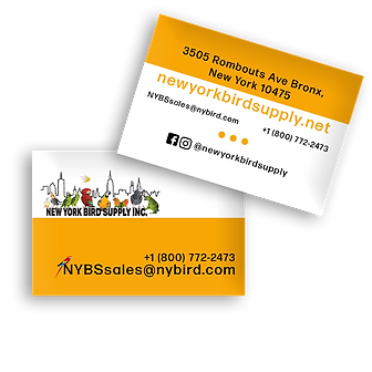 nybs-card.png