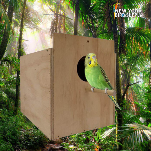 cocatieal-wood-breeding-box-large-590096