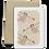 Thumbnail: Monkeys Melocard