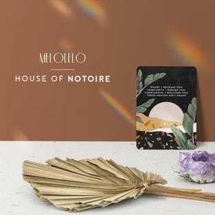 House of Notoire