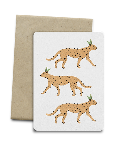 Leopards Melocard