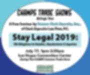 LV41 Legal Seminar-300x250.png