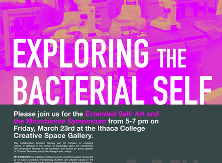 "Join us at Ithaca College March 23! The title of my talk is ""Towards a Scalar Identity Politics"