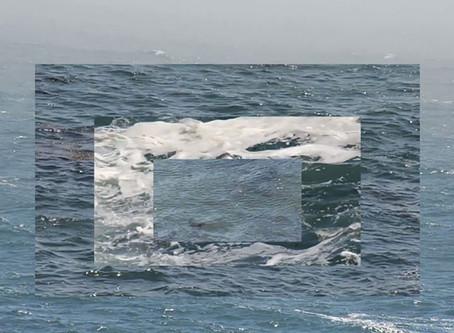 Information Ocean: Marine Art in the Digital Age