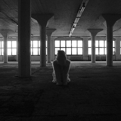 contemporary dance / photo