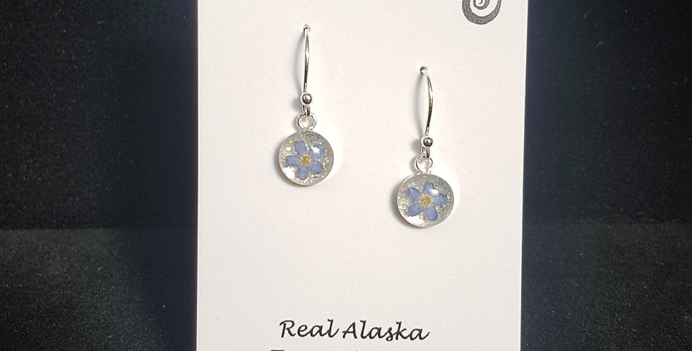 Real Forget Me Not Flower 8mm Earrings