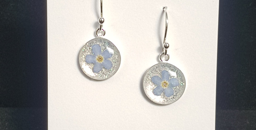 Real Forget Me Not Flower 12mm Earrings