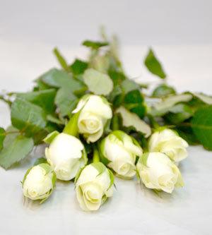 les 10 roses 40cm