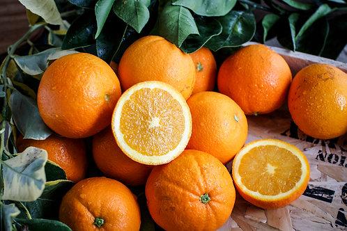 US Oranges 1kg