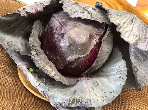 Red Cabbage half