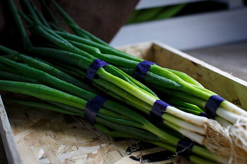 Spring onion 2bunch
