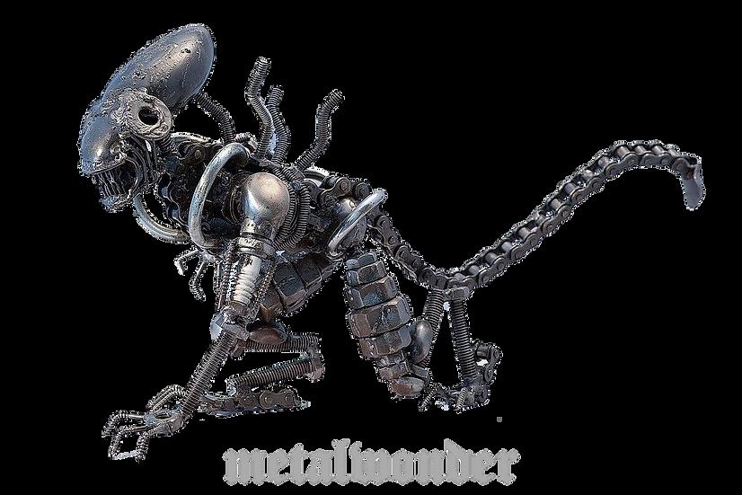 Alien Mittel