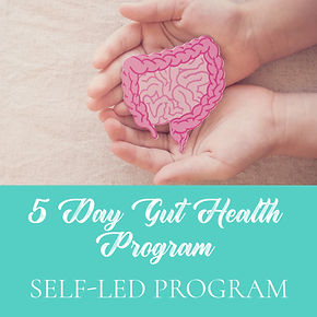 Rachel Harshfield Gut Health Program.jpg