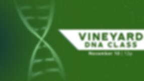 vineyard-class.png