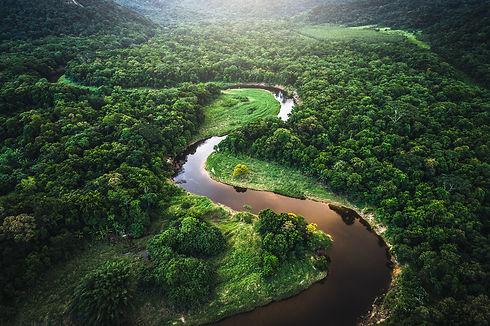 Amazônia - Brazil.jpg