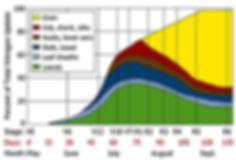 nitrogen management, corn