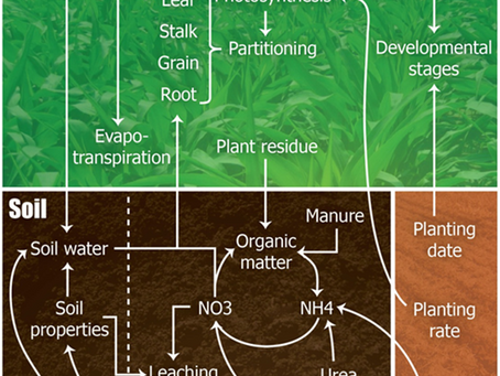 Nitrogen School Part 3: Managing Nitrogen Efficiently Is Hard! Guest Post!!