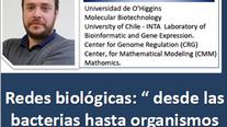 """Redes biológicas: """" desde las bacterias hasta organismos superiores"""""""