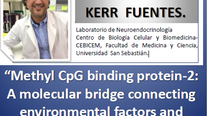 """""""Methyl CpGbinding protein-2: A molecular bridge connecting environmental factors and energy homeost"""