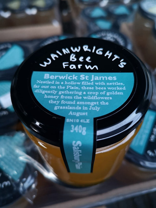Berwick st james