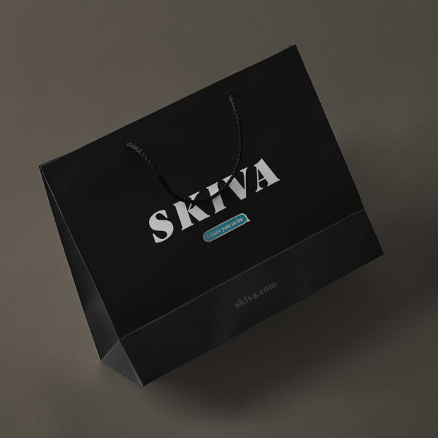 Skiva8.png