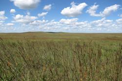 NPS Kansas Prairie