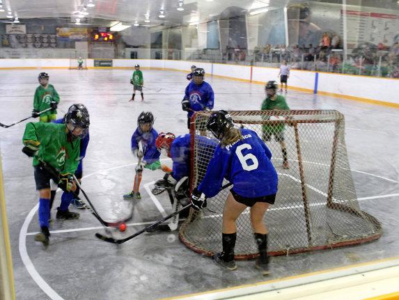 Peterborough Minor Ball Hockey League