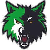 loomis_logo.jpg