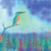 Kingfisher--web.png