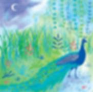 Peacock--web-.png