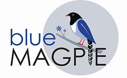 Blue magpie with circular background cop