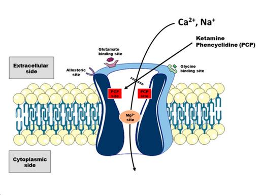 Ketamine's Mechanisms of Action: The Secrets Explaining an Old Drug's New Tricks