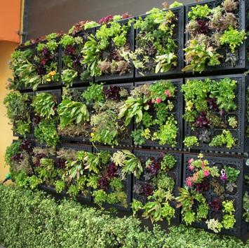 como-hacer-un-jardin-vertical-ideas-esti