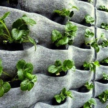 jardin-vertical-bolsas-fieltro.jpg