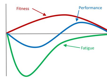Understanding The Relationship Between Fitness And Fatigue