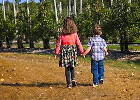 A color photo of a young girl and young boy holding hands while walking away in an apple orchard