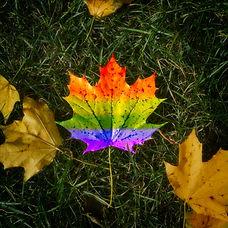 Pride Leaf.jpg