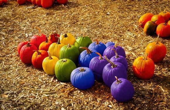Pride Pumpkins: 11x17