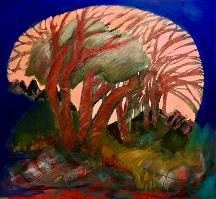A Forest of Wonder Awaits