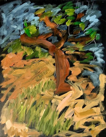 tree park 14 x 11 inches