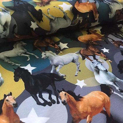 2. Wahl Jersey Digitaldruck Horses, Dots & Stars