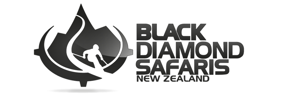 BlackDiamond_2tone_black (2).png
