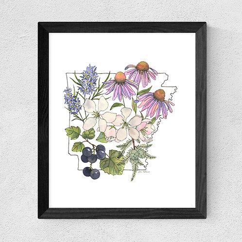 Arkansas Flowers watercolor print