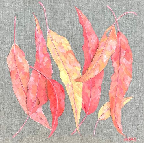 Australian Autumn   61x61cm